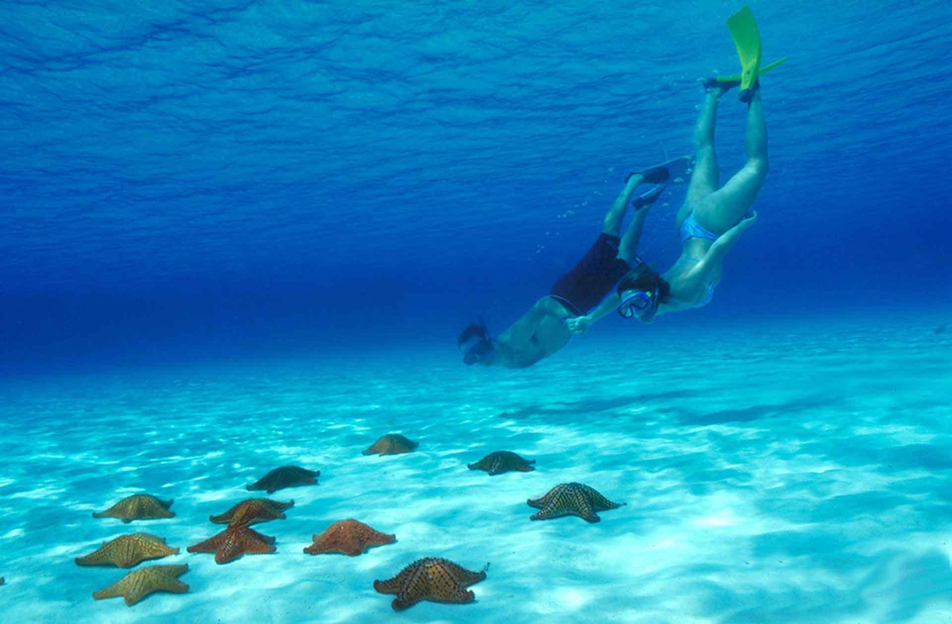excursion-cozumel-riviera-maya-sl-3-o