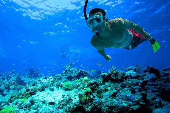 excursiones-riviera-maya-sec1-ini2